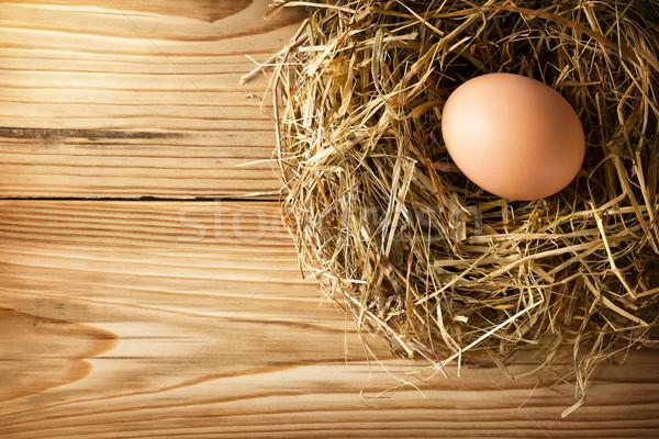 Egg in nest Stock photo © Bozena_Fulawka