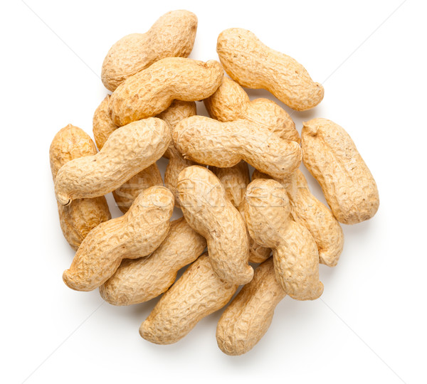 Peanuts Isolated on White Background Stock photo © Bozena_Fulawka