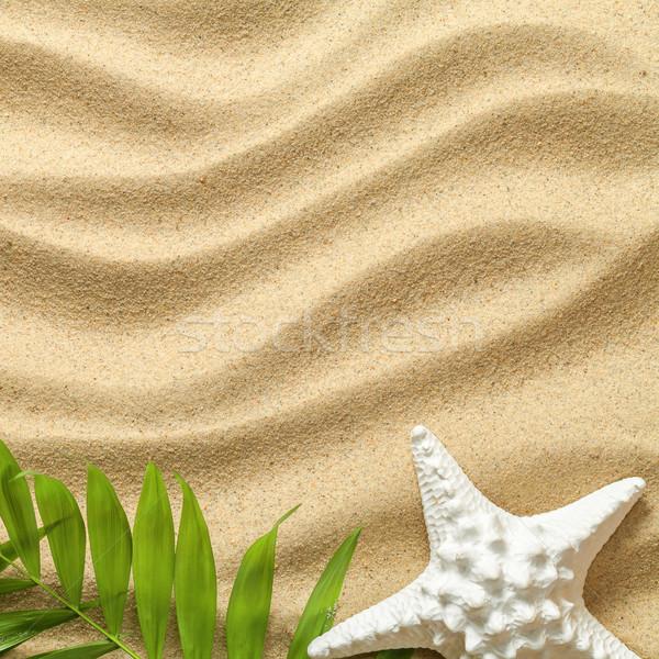Zomer groene palmbladeren zeester strand textuur Stockfoto © Bozena_Fulawka