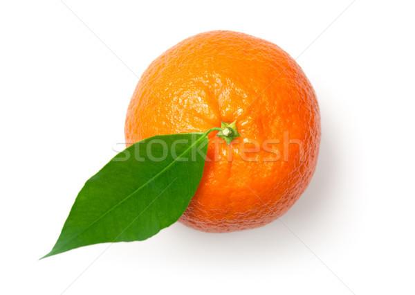 Geïsoleerd witte mandarijn blad top Stockfoto © Bozena_Fulawka