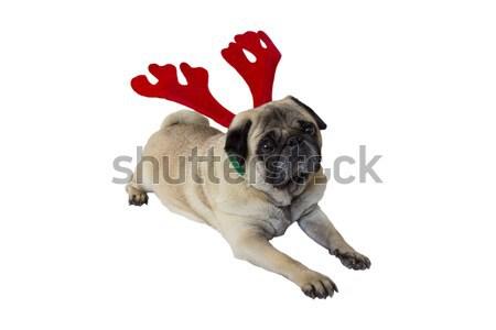ベージュ 着用 クリスマス 悲しい トナカイ ストックフォト © bradleyvdw