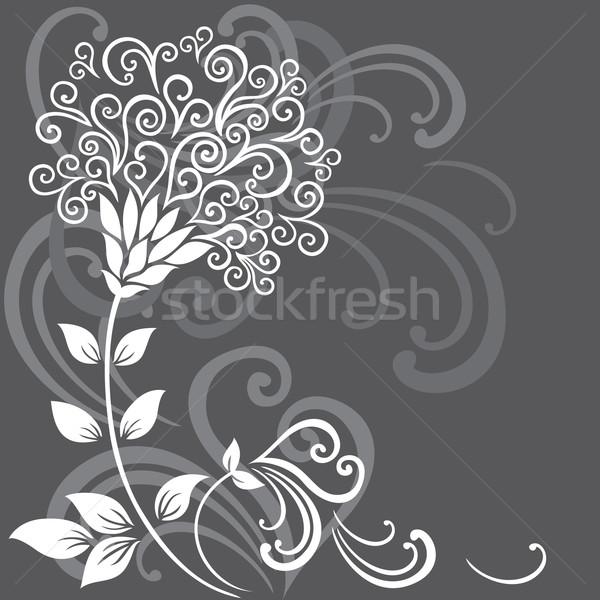 フローラル 花 グレー 抽象的な 背景 美 ストックフォト © brahmapootra