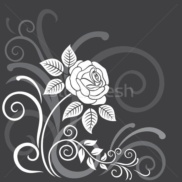 装飾的な フローラル バラ グレー 背景 芸術 ストックフォト © brahmapootra