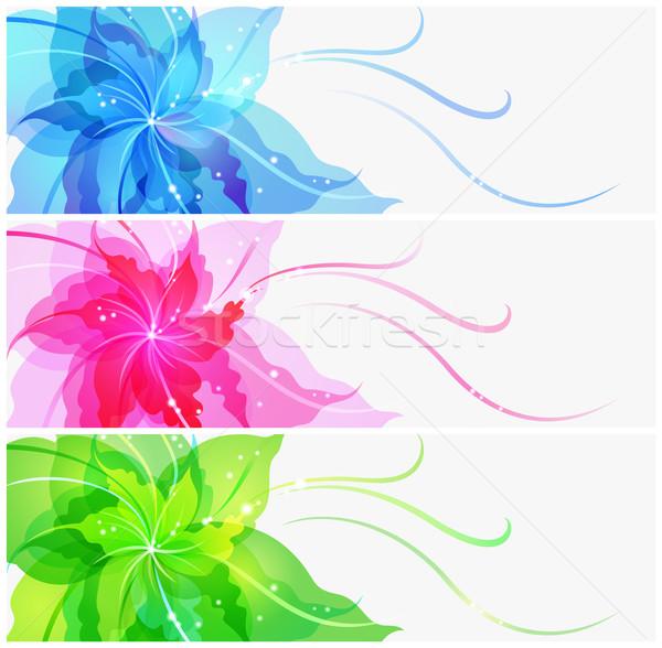 Triple EPS10 colorful flower background Stock photo © brahmapootra