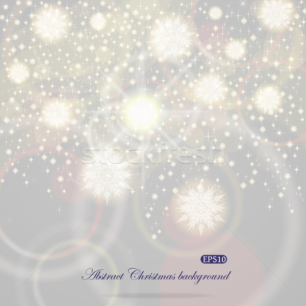 クリスマス 飛行 雪 eps10 ベクトル ストックフォト © brahmapootra