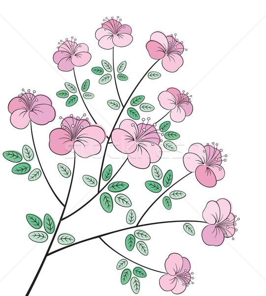 かなり カラフル 花 行 芸術 ベクトル ストックフォト © brahmapootra