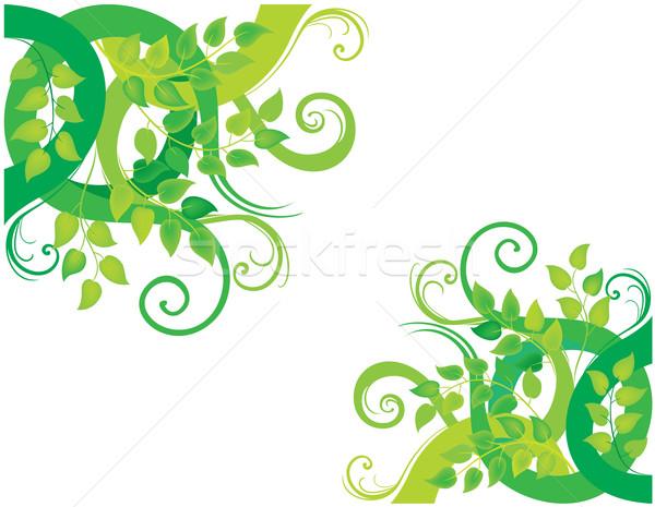 緑 装飾的な 実例 フローラル 春 背景 ストックフォト © brahmapootra