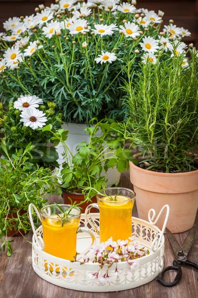 Domowej roboty lemoniada rozmaryn cytryny serwowane ogród Zdjęcia stock © brebca
