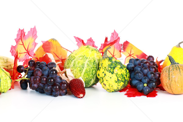 Thanksgiving Stock photo © brebca