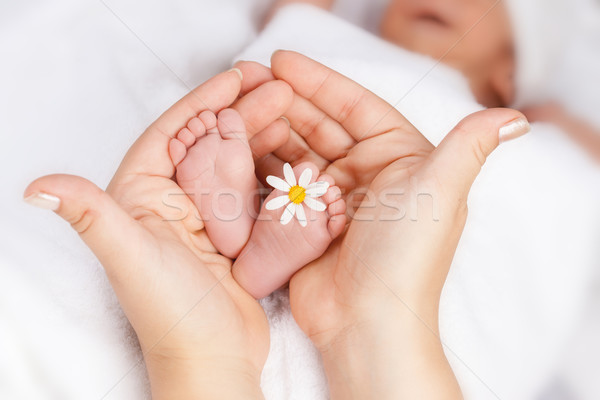 Lovely infant foot with little white daisy Stock photo © brebca