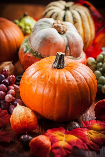 Pumpkins for Thanksgiving and  Halloween Stock photo © brebca