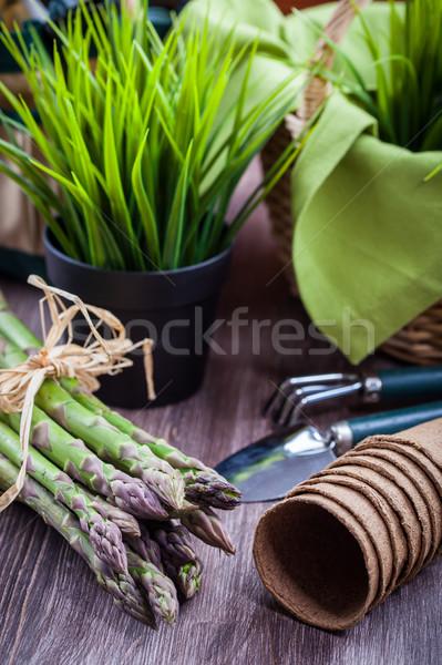 Fresh green asparagus with garden tools Stock photo © brebca