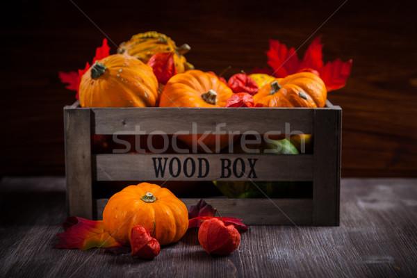 Pumpkins and Thanksgiving Stock photo © brebca