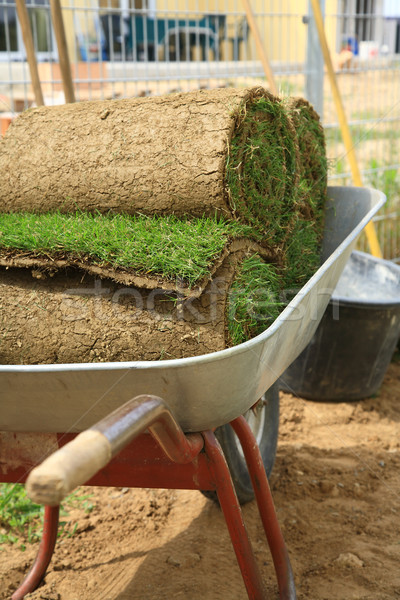 Rolled sod Stock photo © brebca