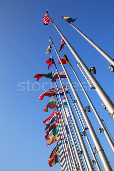 Bayraklar avrupa mavi gökyüzü mavi bayrak Avrupa Stok fotoğraf © brebca