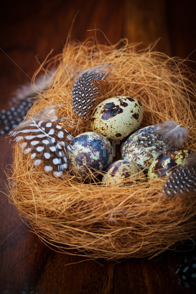 Easter still life with quail eggs Stock photo © brebca