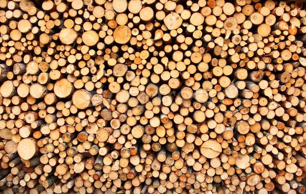 Köteg fa aprított tűz előkészített tél Stock fotó © brebca
