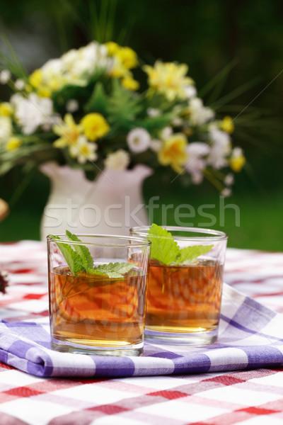 Kräutertee Freien Esszimmer Obst Garten trinken Stock foto © brebca