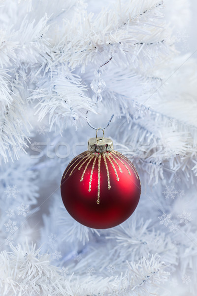Stock photo: Red Christmas ball hanging on white tree