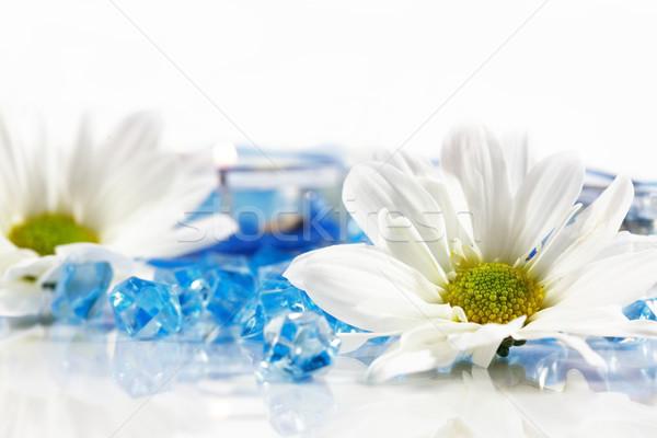 Bem-estar aromaterapia flor água corpo azul Foto stock © brebca