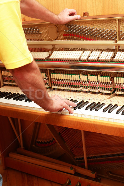 Piano tuner Stock photo © brebca