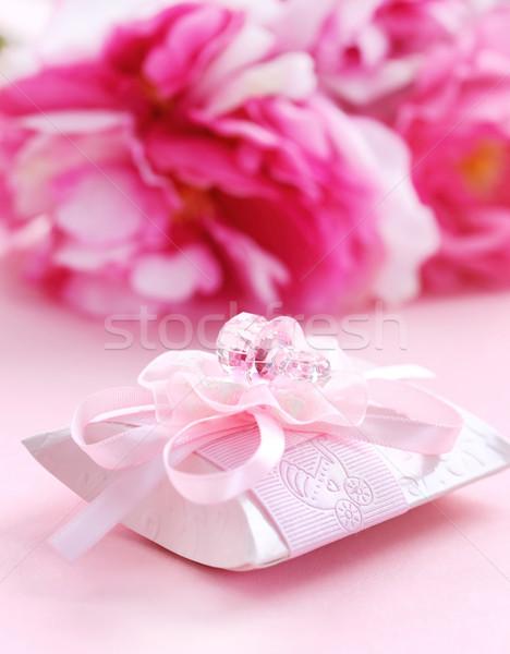Zdjęcia stock: Różowy · obecnej · polu · pacyfikator · dziecko