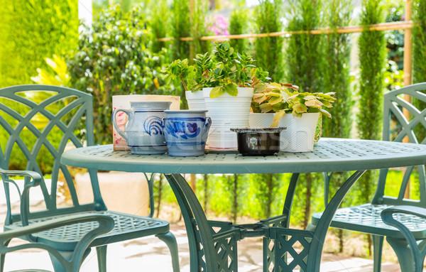 Outdoor patio planten huis home zomer Stockfoto © brebca