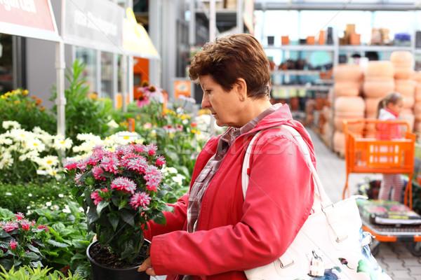 Senior vrouw naar planten bloem Stockfoto © brebca