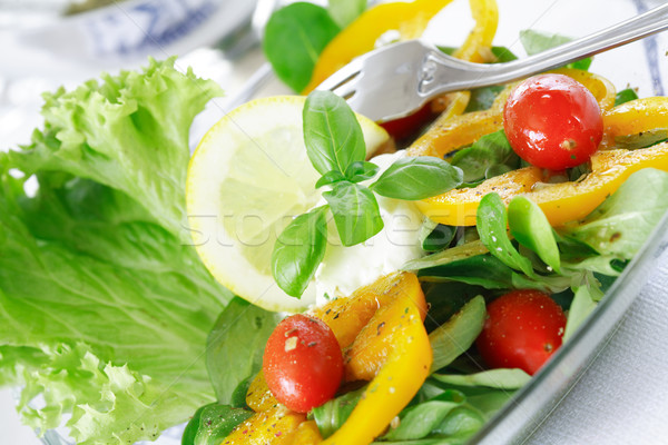 Delicious vegetable salad with low calorie Stock photo © brebca