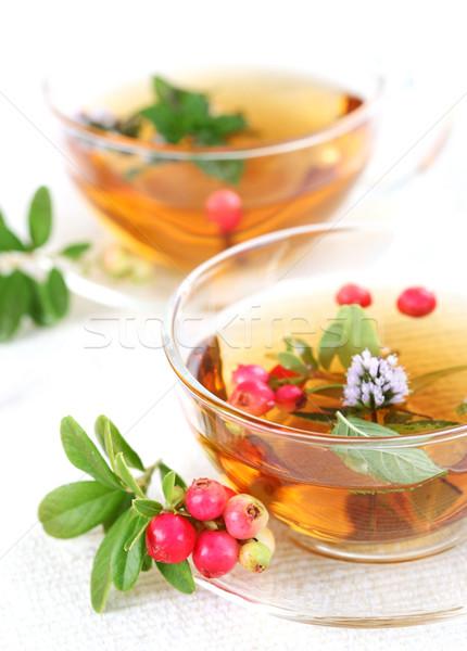 Té menta hojas agua alimentos relajarse Foto stock © brebca