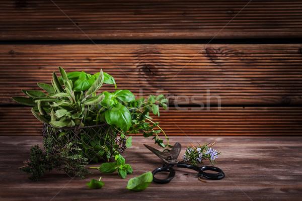 Foto stock: Ervas · diferente · fresco · jardim · tesoura