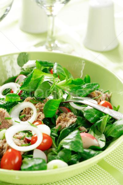 Sağlıklı gıda salata sağlık alan yeşil biber Stok fotoğraf © brebca