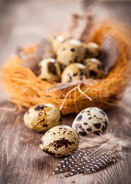 Paskalya yumurtası yuva ahşap bağbozumu stil boya Stok fotoğraf © brebca