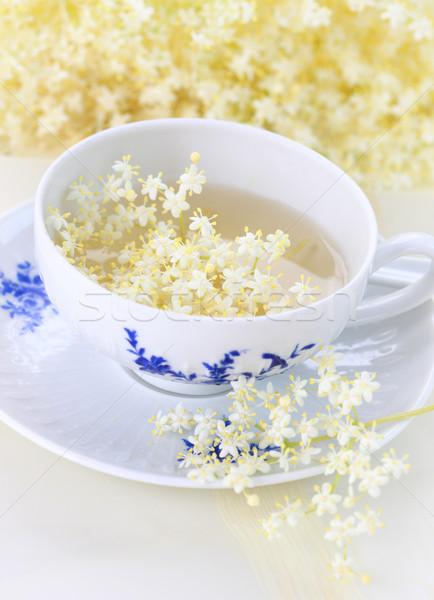 Holunder Blume Tee gesunden Wasser Stock foto © brebca