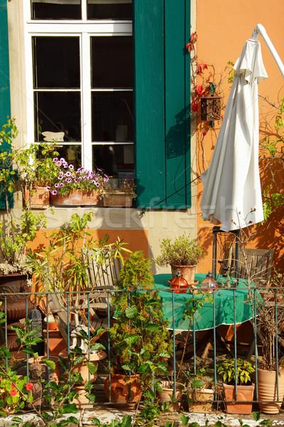Terrasse toit jardinage faible herbe jardin de fleurs Photo stock © brebca