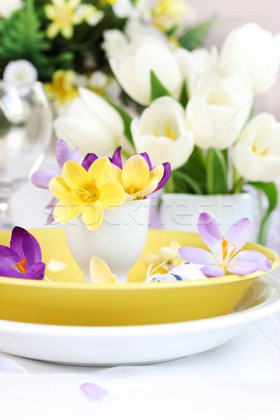 Place setting for Easter with crocuses Stock photo © brebca