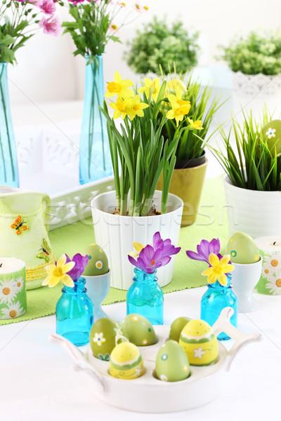 Yer Paskalya nergis taze yeşil ot çiçek Stok fotoğraf © brebca