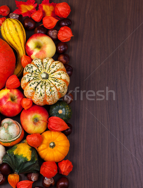 Thanksgiving border Stock photo © brebca