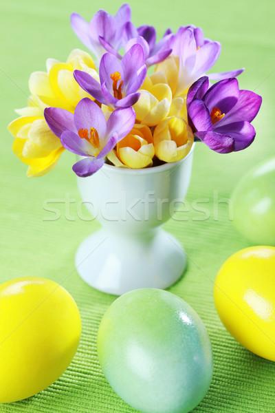 Beautiful Crocuses for Easter Stock photo © brebca