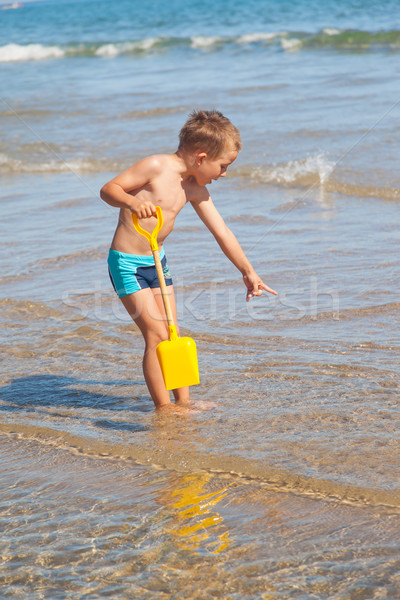 Stock photo: Boy looking for sea shells