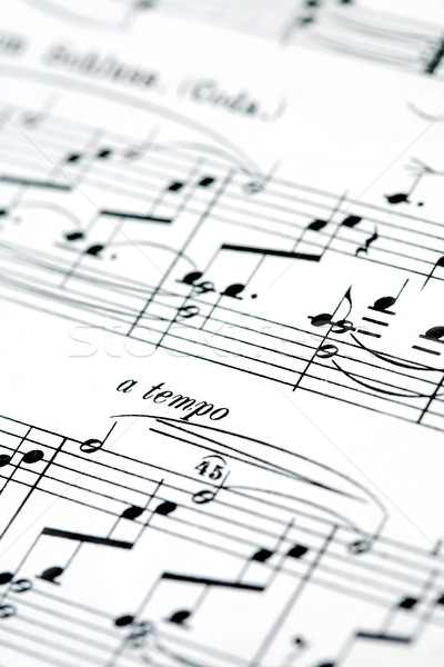 Music notes background Stock photo © brebca