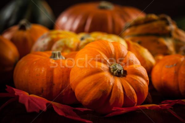 Thanksgiving and  Halloween Stock photo © brebca