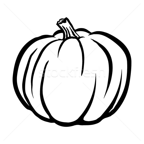 Pumpkin Vector Icon Stock photo © briangoff