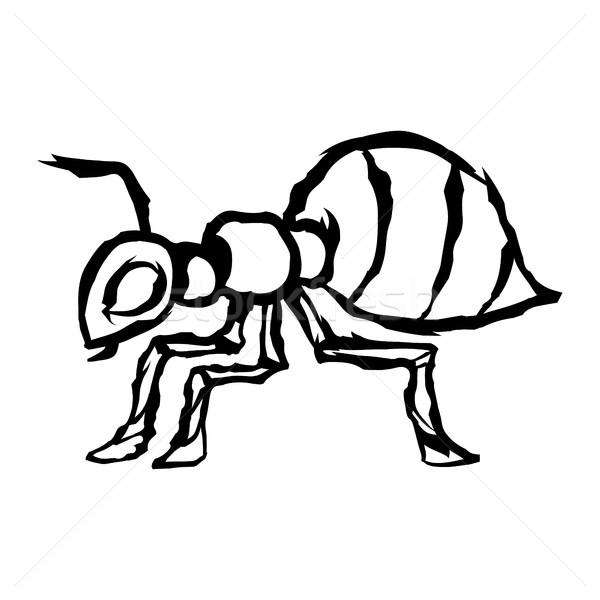 Ant natura giardino sfondo disegno bug Foto d'archivio © briangoff