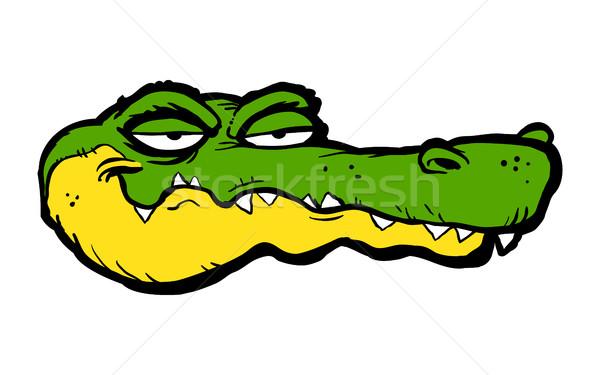 Alligator Karikatur Natur grünen Kopf Park Stock foto © briangoff