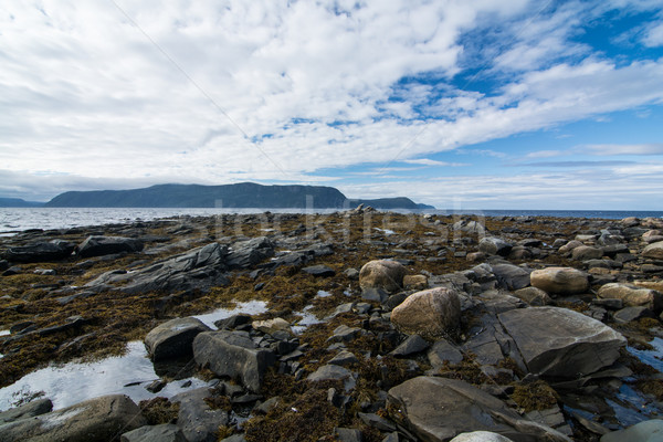 Rocky Coastline in Newfoundland, Canada Stock photo © brianguest