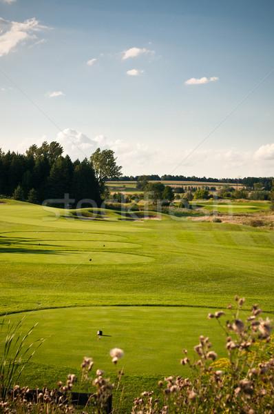 Buraco campo de golfe grama verde blue sky grama esportes Foto stock © brianguest