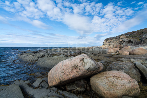 Rugged Newfoundland Coastline Stock photo © brianguest
