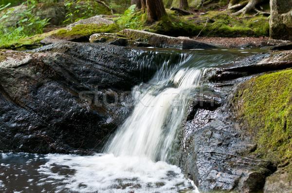 небольшой Онтарио водопада вниз пород Сток-фото © brianguest