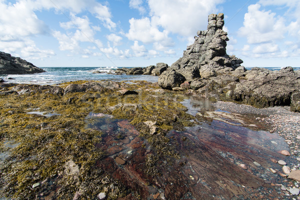 Rock Formations on the coast of Newfoundland and Labrador Stock photo © brianguest